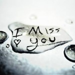 You Miss Me Also