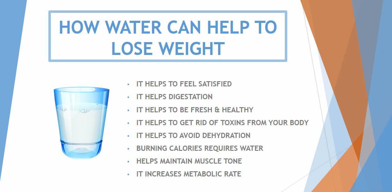 Digestive System Drinking Water