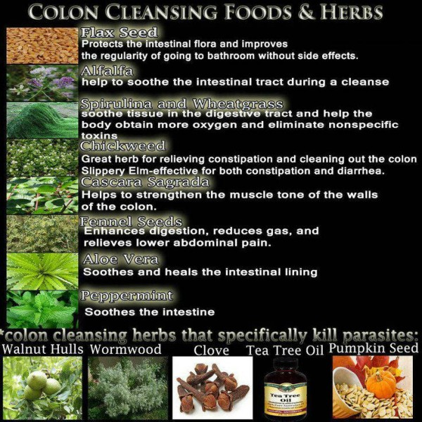 Colon Cleanse Foods & Herbs