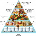 Healthy Nutrition - Low-Fat Foods