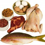 Healthy Nutrition - Protein