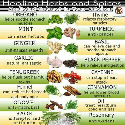 Herbal Remedies - Healing Herbs and Spices