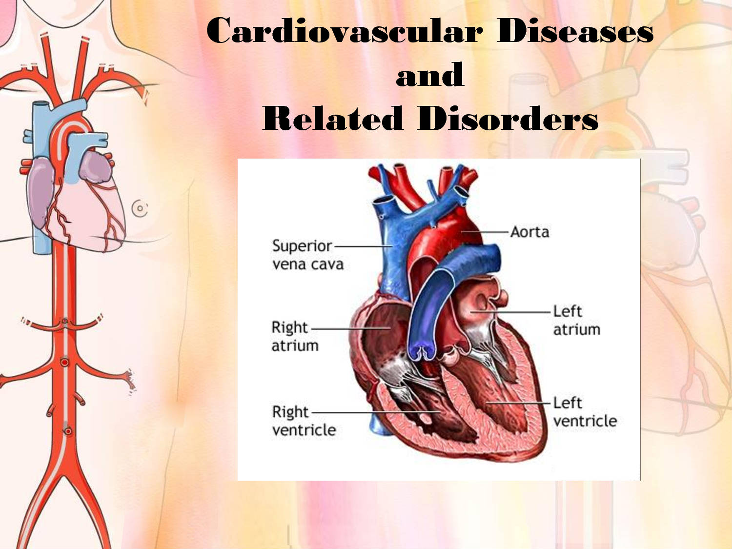 how do individuals from different cultures or regions differ in the occurrence of cardiac disease ho The scientist-practitioner model of psychology focuses on a the psychologist's use of scientific principles to study which treatments are most effective and to decide which treatment to use.