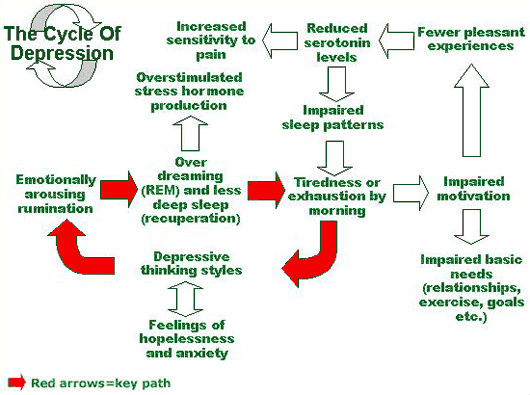Symptoms of Depression - Cycle
