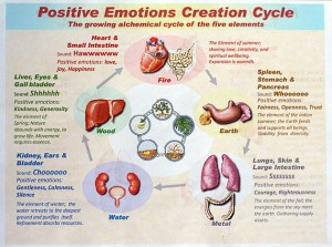 Positive Emotions Creation Cycle