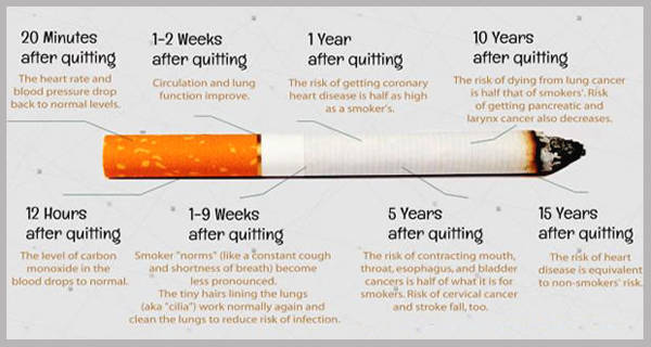 Stop Smoking - What Happens