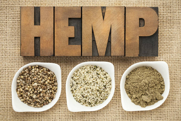 Hemp The Miracle Superfood You're Not Eating