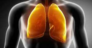 The Best 13 Respiratory Support and Lung Cleansing Herbs