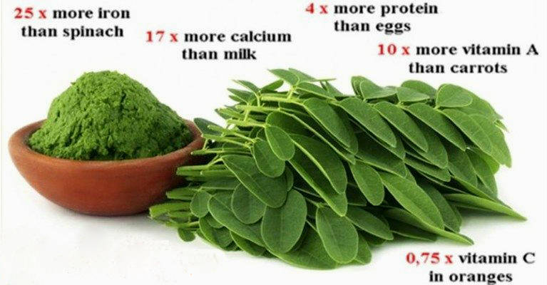 Moringa Herb Could be the Cure to 5 Different Types of Ca