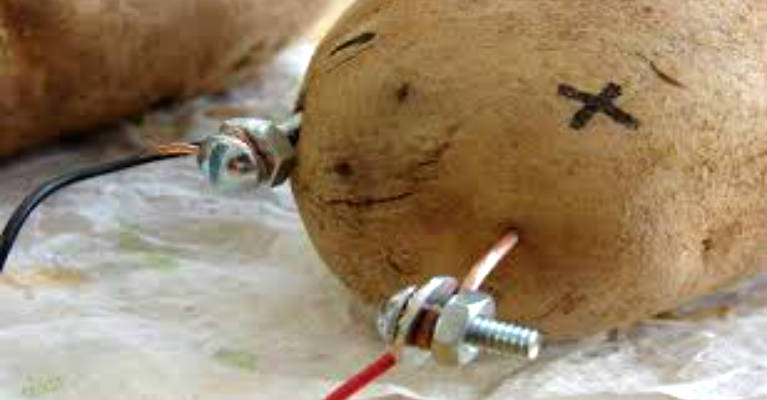 Did You Know that Using a Potato you can Light a Room for a Month! – VIDEO