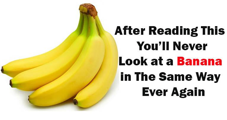 Most Interesting Facts >> 7 Most Interesting Facts About Bananas You Never Knew