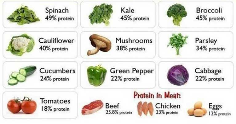 Best Foods To Increase Calorie Intake