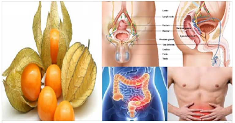 This Amazing Fruit is a Real Treasure. It Prevents Stomach and Colon Cancer!