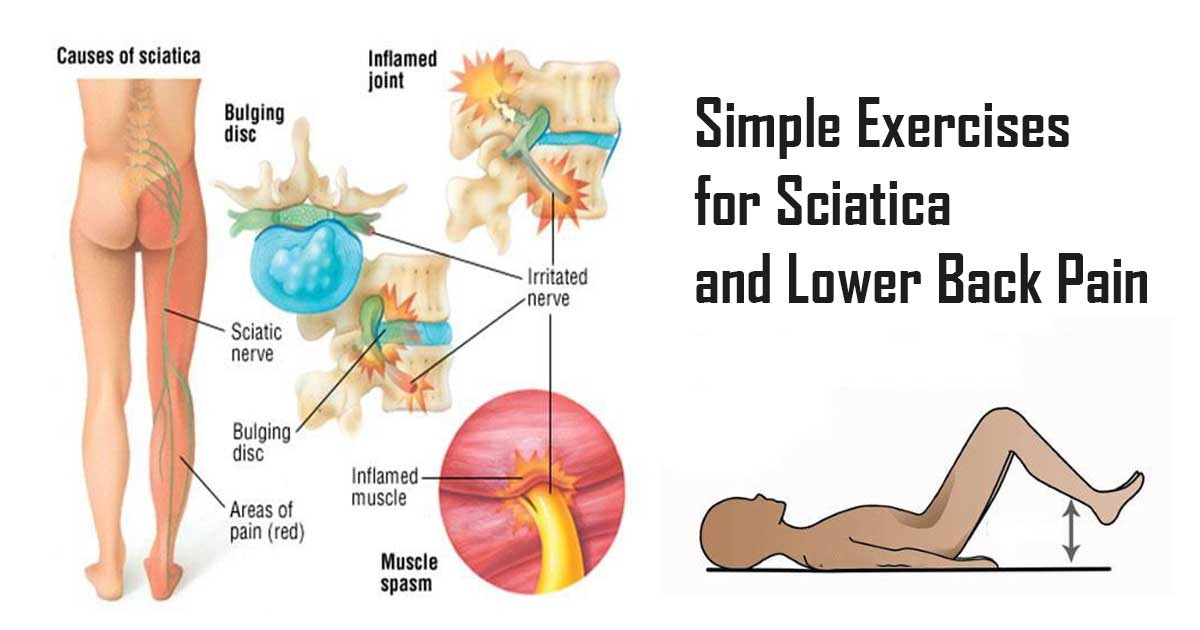 Best Bed For Lower Back Pain 5 Solutions To Lower Back