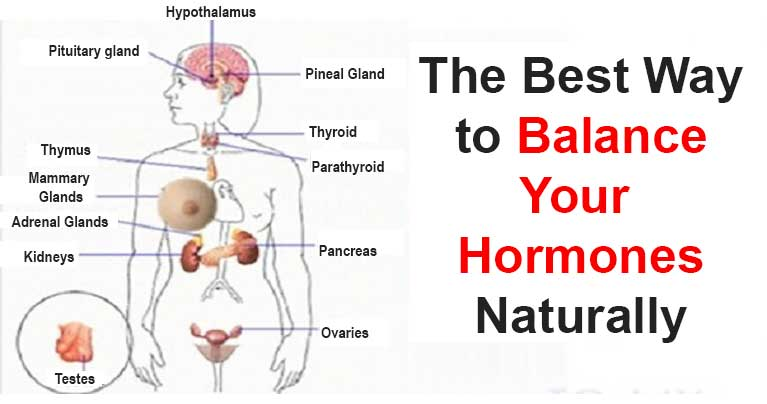 The Best Way to Balance Hormones with Only 5 Herbs