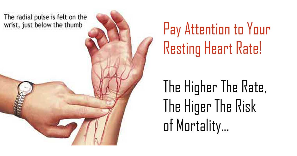 Why It Is Important To Pay Attention to Your Resting Heart ...