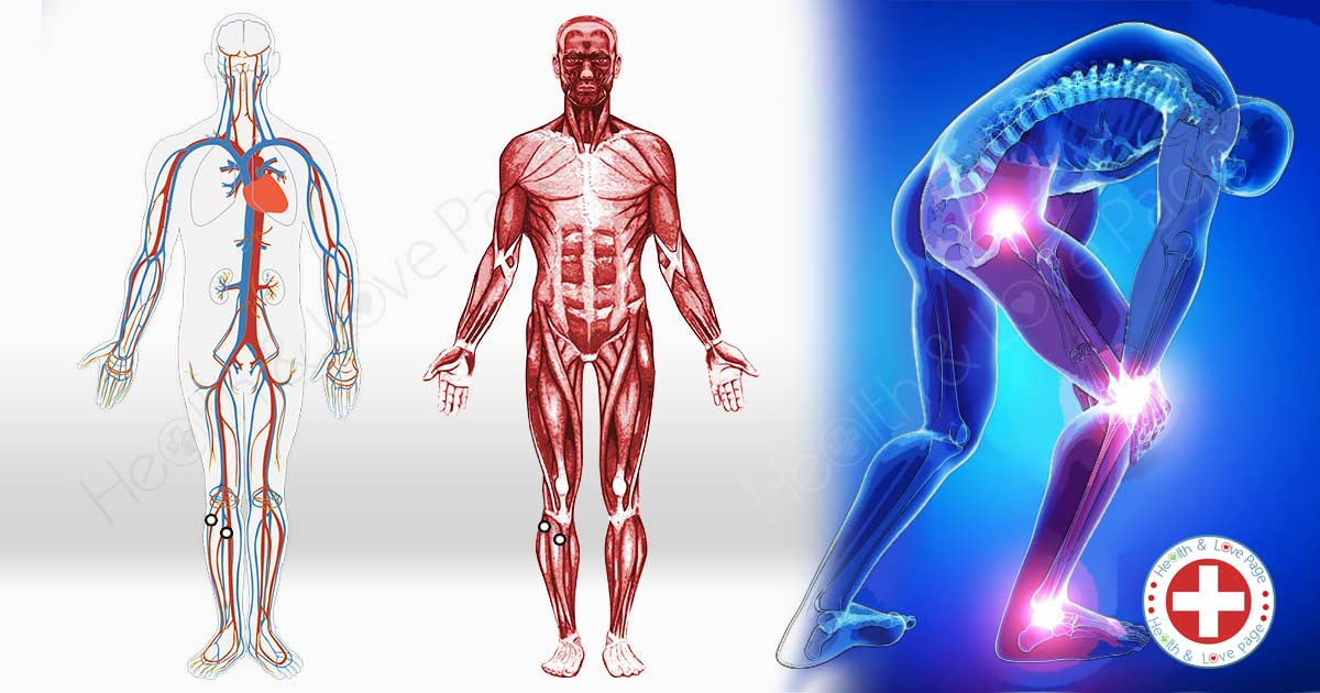 2 Acupressure Points that Can Help Relieve Hip and Back Pain, Nausea and Muscle Stiffness