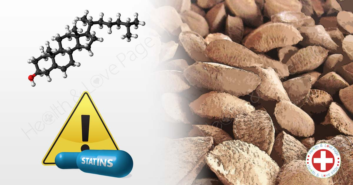 How Many Brazil Nuts a Month Can Replace Statins to Improve Cholesterol Levels