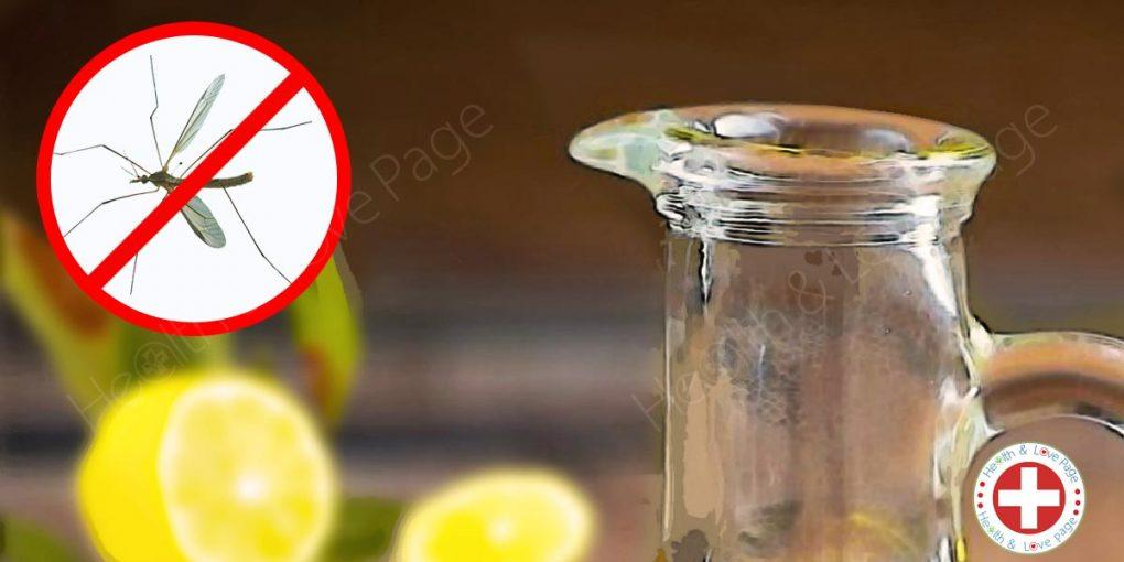 How to Make Simple Mosquito Repellent That's More Effective Than Commercial Ones