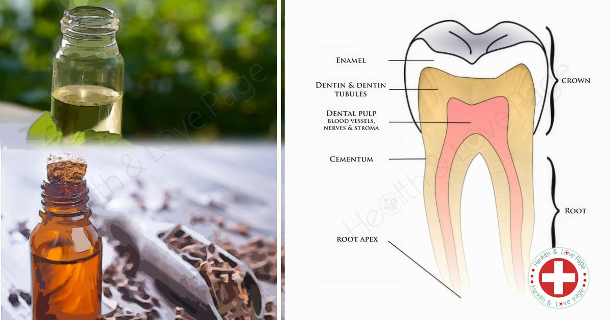 2 Essential Oils for Healthy Teeth and Gums